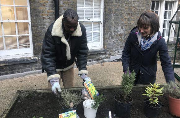 Customer planting vegetables